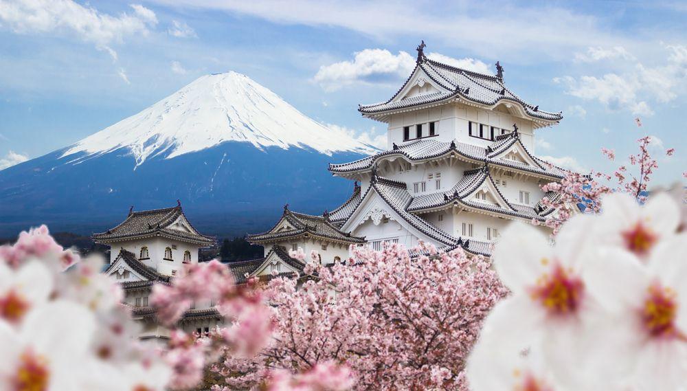 viajar a japon con niños