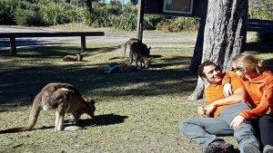 viajar a australia barato