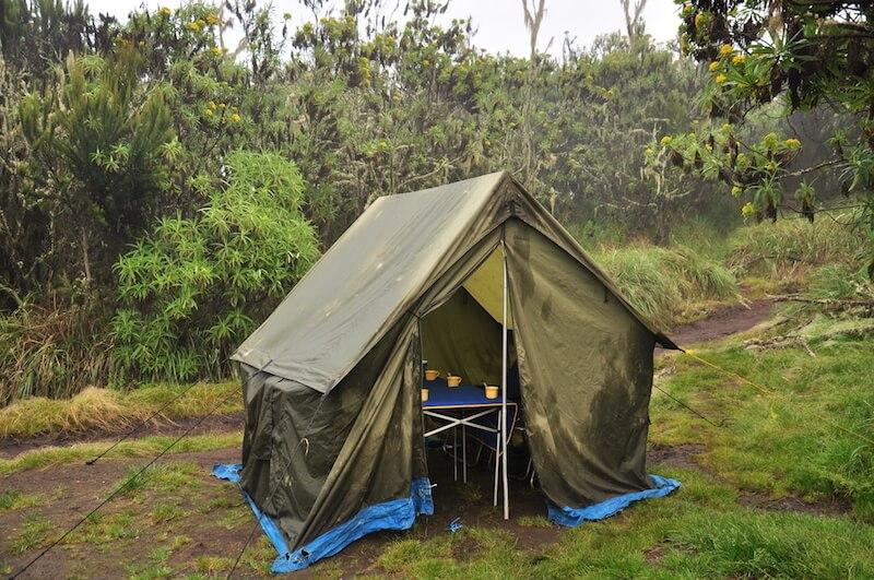 kilimanjaro viajes