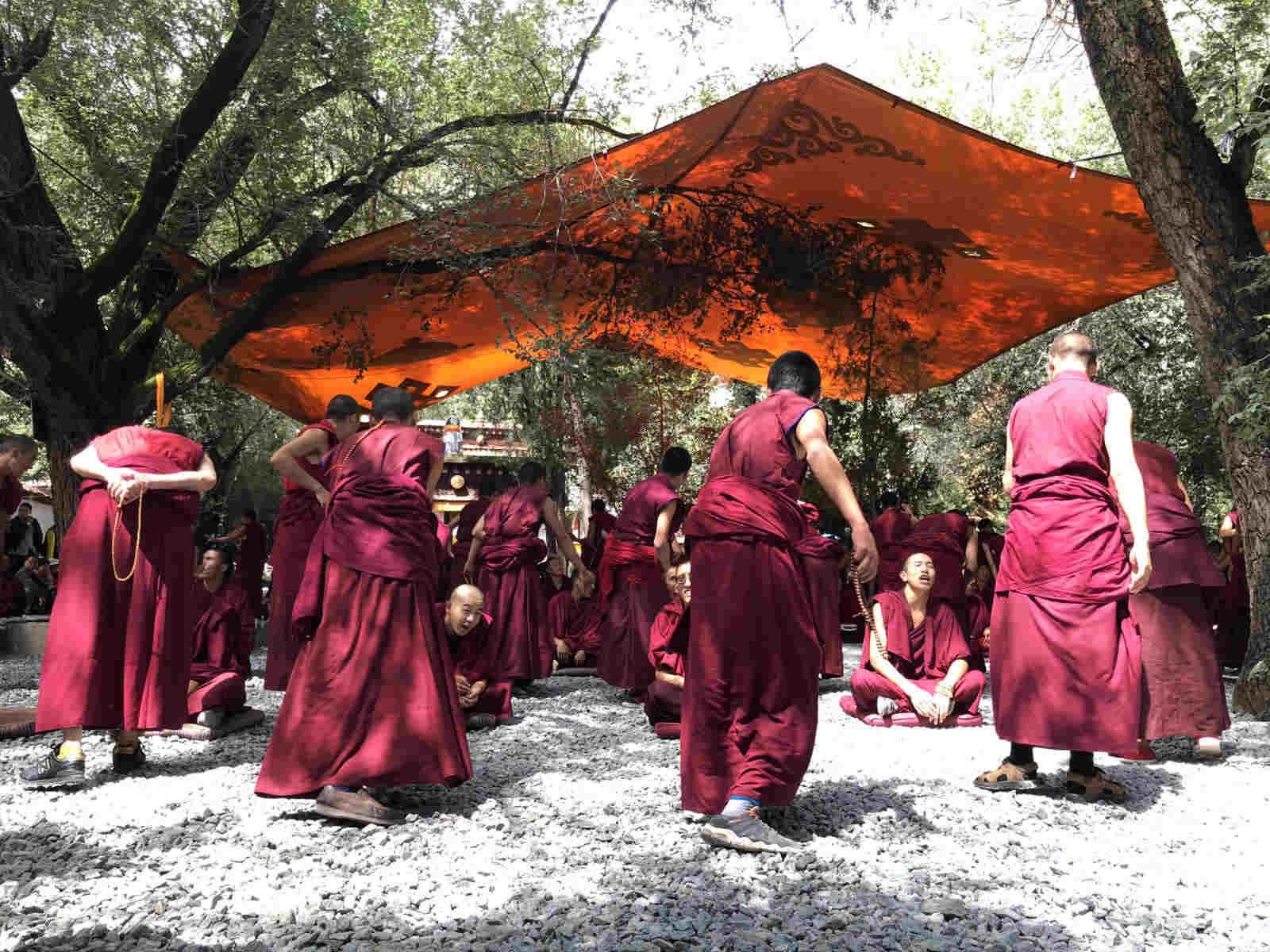 que ver en el tibet monasterio sera