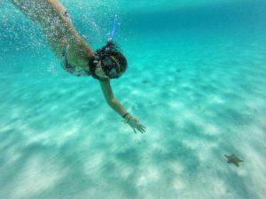 Riviera Maya snorkel en Cozumel